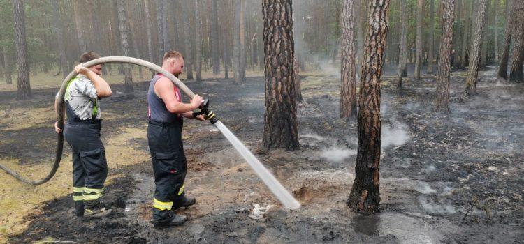 21.06.2021 Požár lesního porostu Libotenice